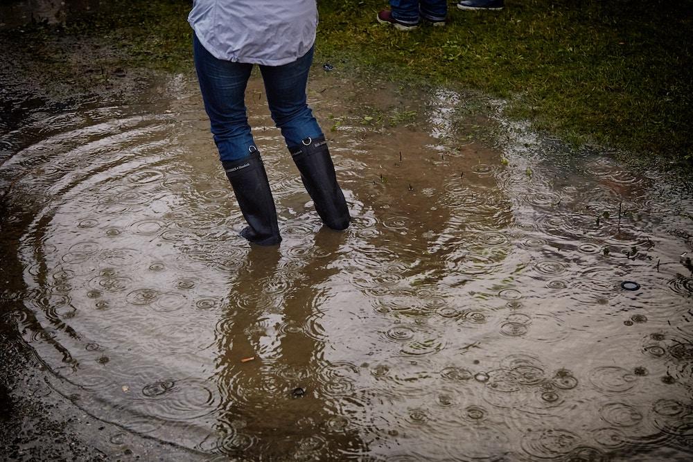 flood insurance Champaign IL